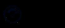 Firma informatyczna MAGIS